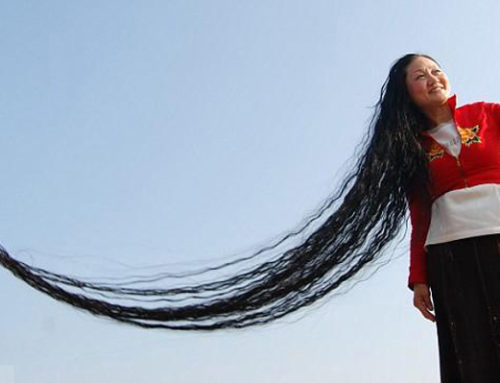 Record-Breaking Facts About Hair